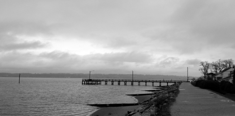 Pier on the Horizon- Black & White